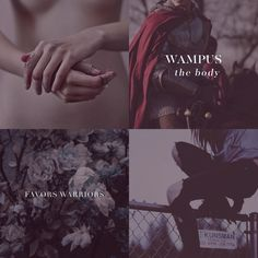 North American School of Witchcraft & Wizardry  -  Wampus