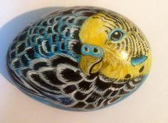 Budgie+hand+painted+rock+uk+riverrockart+pet+by+Cobblecreatures