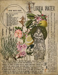 Book of Shadows page. Potioncraft (the making and use of magickal potions) has been a talent of most Witches since the earliest of times.