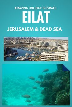 Eilat Israel is a true gem for shopping, diving, luxury hotels as well as world class entertainment and sport facilities