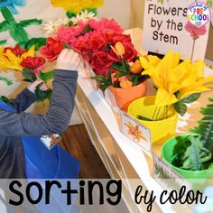 Sort flowers by color at the Flower Shop Dramatic Play for a spring theme, Mother's Day theme, or summer theme when everything is growing and blooming. Any preschool, pre=k, and kindergarten kiddos will LOVE it (and learn a ton too). #flowershop #gardenshop #presschool #prek #dramaticplay