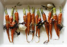 Carrots Roasted with Herbs