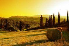 La Toscana italiana 🌹