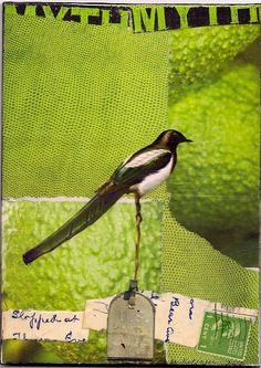 Black Bird and Mailbox collage art - Mary Lue Kellgren