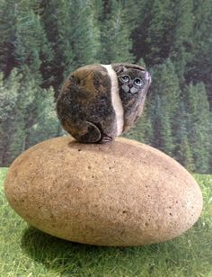 Hand Painted River Rock Cat Petrified Cat by qvistdesign on Etsy, $15.00