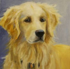 This is Hazel...my daughters family Golden Retriever.  Hazel is a gorgeous Golden...loving, kind and a crazy girl at times.