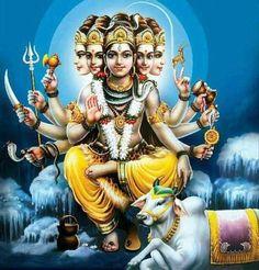 Shiva Hindu, Shiva Art, Hindu Deities, Hindu Art, Hare Krishna, Krishna Art, Lord Shiva Hd Images, Shiva Lord Wallpapers, Aghori Shiva