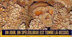 Top 10 des découvertes archéologiques les plus flippantes la science aussi fait des jump scares