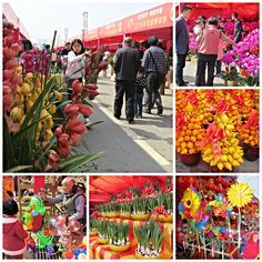 Life in China: A Picture A Day - February 4, 2016 - Flower Fair, Nancheng, Dongguan, China  - My Own Chinese Brocade Blog Songshan Lake, Dongguan, Guangdong, China