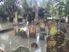 Image result for flooded graves
