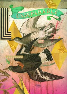 U IS FOR UNSEPERABLE ARTIST: EDUARDO RECIFE