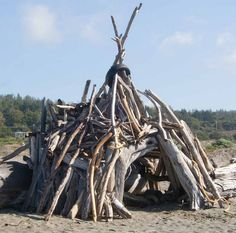 What an awesome driftwood playhouse this would be!