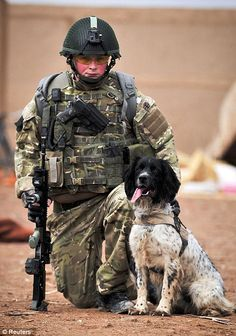 A medal of courage for bomb dog Theo: Posthumous award for heroic animal who died hours after his master | Mail Online