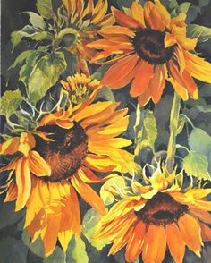Summer Sunflowers ...Catherine Hearding is a self-taught artist with more than 30 years of experience in watercolor. She has a BA degree in zoology and botany from the U of Montana (1974). She works from her home studio in Lake Elmo, MN, and teaches classes and workshops in basic watercolor technique, color theory and composition.