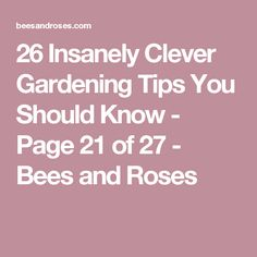 26 Insanely Clever Gardening Tips You Should Know - Page 21 of 27 - Bees and Roses