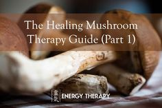 THE HEALING MUSHROOM THERAPY GUIDE (PART 1). CHAGA, THE IMMUNE BOOSTING SUPERFOOD, AND CORDYCEPS, FOR ANTI-AGING & EXERCISE PERFORMANCE