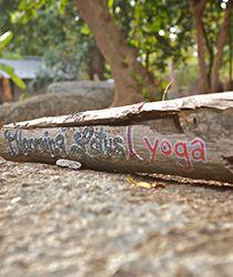 Blooming Lotus Yoga In Thailand, Koh Phangan, Yoga Retreats