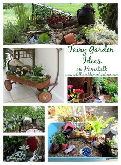 A collection of pictures of fairy gardens from the web or submissions. Still putting this together....