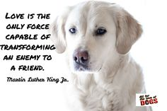 Martin Luther King Jr. / Love is the only force capable of transforming an enemy to a friend.