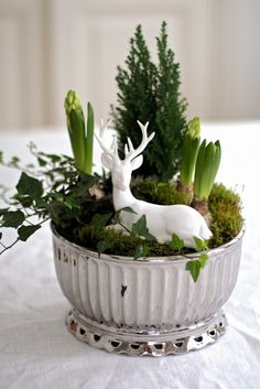 Among probably the most lovely and sophisticated types of flowers, we carefully picked the corresponding ones and converted them right into a unique design. You can obtain plants from our website and Christmas Plants, Christmas Flowers, Noel Christmas, White Christmas, Vintage Christmas, Rustic Christmas, Arrangements Ikebana, Floral Arrangements, Mery Crismas