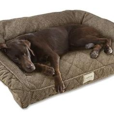 Bolster Dog beds for Large Dogs