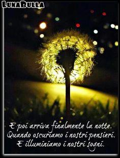 And then finally comes the night. When we obscure our thoughts. And we light our dreams. ~ E poi arriva finalmente la notte. Quando oscuriamo i nostri pensieri.  E illuminiamo i nostri sogni.  ~ Agostino Degas ~