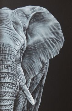 The Elephant Visitor (2014) Acrylic painting by Karl Hamilton-Cox | Artfinder