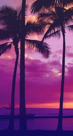 Imagem de wallpaper, beach, and summer