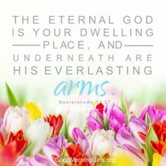 The eternal God is your dwelling place, and underneath are His everlasting arms. Deuteronomy 33:27