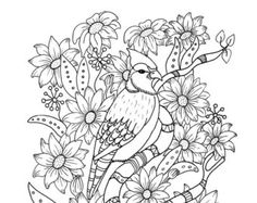 Adult Coloring Books By Marty Woods