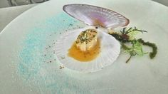 Shared scallop w/ herb butter n sea grape  Amuse