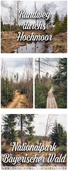 Rundtour durchs Hochmoor | Nationalpark Bayerischer Wald | GPS-Track | Wandern im Bayerischen Wald | Hochmoor und Filz in Niederbayern