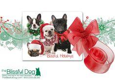 FRENCH BULLDOG Holiday Dog Gift Combo  Nose by TheBlissfulDog