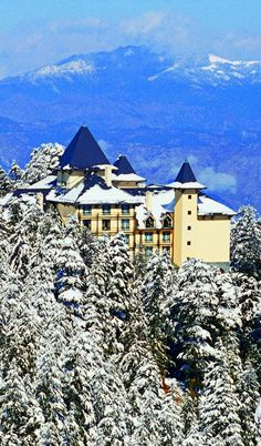 India, tucked into the Himalayan foothills. I will stay here before I die Lord willing