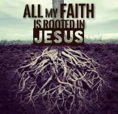 Colossians 2:6-7  As you therefore have received Christ Jesus the Lord, so walk in Him, rooted and built up in Him and established in the faith, as you have been taught, abounding in it with thanksgiving.