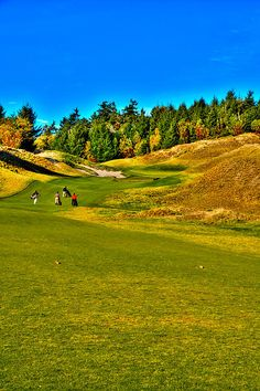 #12 at Chambers Bay Golf Course - Location of the 2015 U.S. Open Tournament