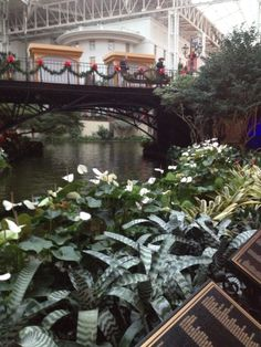 Gaylord Opryland at Christmas