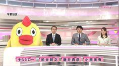 Anchor Chicken