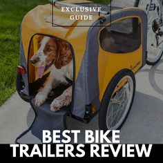Connect Your Pets With Your Bike Ride #pets #bestselling #trending #coolstuff