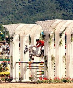 Classic picture of Gem Twist, one of the greatest Thoroughbred jumpers of all time.