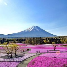 Hotels-live.com/cartes-virtuelles #MGWV #F4F #RT Mount Fuji Japan | Photography by  @capkaieda #EarthOfficial by earthofficial https://www.instagram.com/p/BETc0ztN0fO/