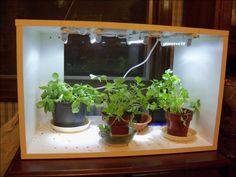17 indoor herb garden ideas thatll perk up your kitchen herbs 17 indoor herb garden ideas thatll perk up your kitchen herbs garden herbs and indoor herbs workwithnaturefo
