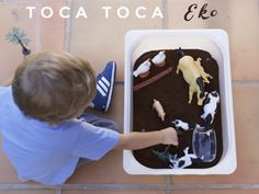 toca tocar eko Lunch Box, Mini, Charms, Lightbox, Lights, Crates, Activities, Trays