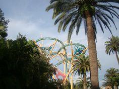 Busch Gardens – Tampa, Flórida                                                                                                                                                                                 Mais