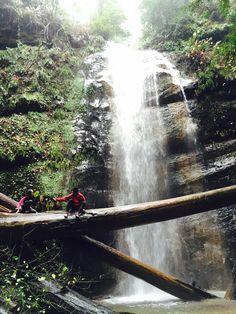 Big Basin Redwoods State Park (Santa Cruz, CA) #hiking #waterfalls #nature #outdoors