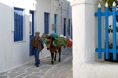 Dimitri and his mule, Mary in Paros, Greece.