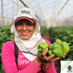 Repin to support these #FairTrade Certified bell peppers that help provide scholarships & education programs!