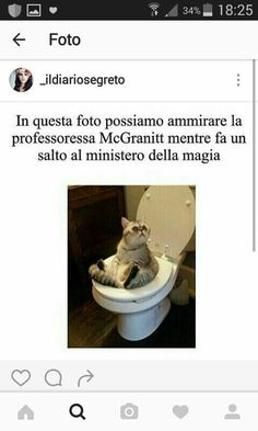 Immagini divertenti 2 by Lucry_gd († lucry †) with reads. Harry Potter Tumblr, Harry Potter Anime, Harry Potter Film, Harry Potter Love, Harry Potter Fandom, Harry Potter Memes, Foto Meme, Dramione, Draco Malfoy