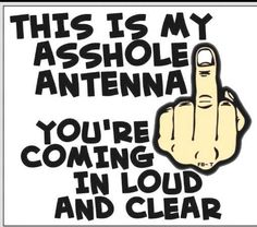 for all of the assholes i am around! Asshole Quotes, Sarcastic Quotes, True Quotes, Funny Quotes, Funny Memes, Jokes, Lol, Haha Funny, Hilarious