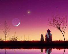 Bajo la luz de la luna...